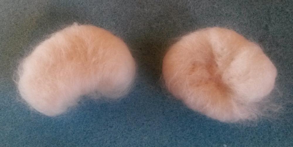 Needle felted guinea pig! (6/6)