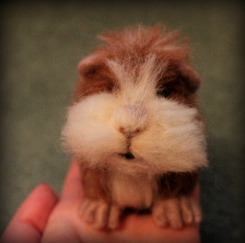 Needle felted guinea pig! (1/6)