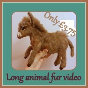 Long animal fur video