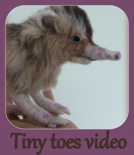 Tiny toes video