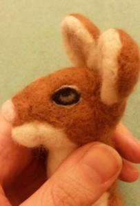 04-mouse eye9