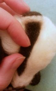 06-badger eye (13)