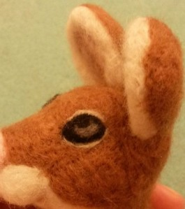 06-mouse eye11