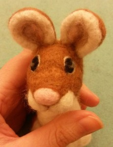 08-mouse eye13