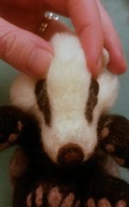 11-badger eye (18)