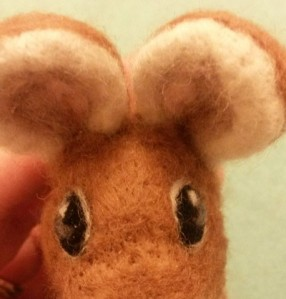 11-mouse eye18