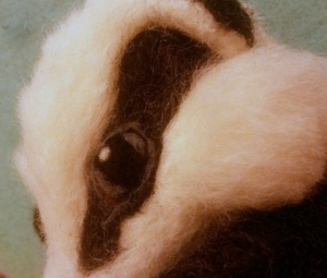 12-badger eye (1)