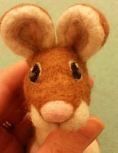 13-mouse eye17