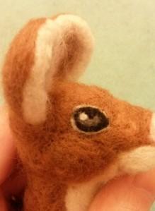 14-mouse eye16