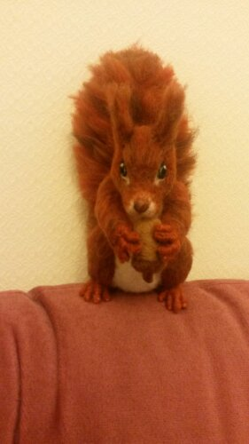Needle felted squirrel (5/5)