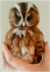 Needle felting a Tawny Owl – photo tutorial