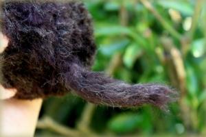 03-Needle felted mole (6)