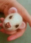 01-Ferret (14)