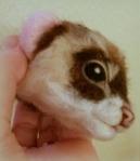 11-Ferret (4)