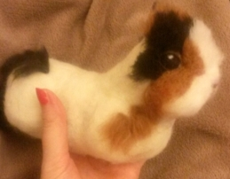 Needle felted WIP guineapig (20)