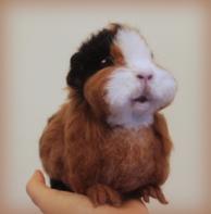 Needlefelted guinea pig (24)