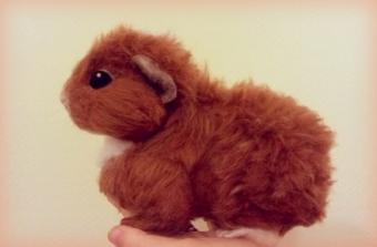 3-Needle felted guinea pig (3)