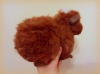 9-Needle felted guinea pig (8)