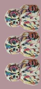 pink-owl-long