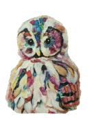 transp-owl