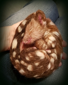 01-Needle felted quoll (24)